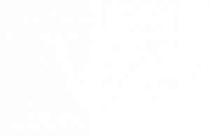 Veterinarian Leadership Experience
