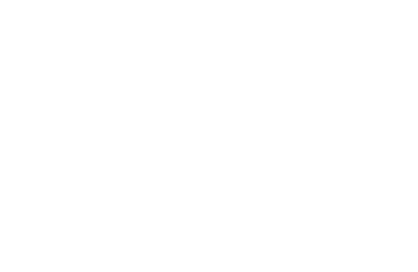 Virtual VLE